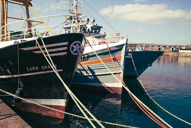 Fishing boats moored at Newlyn harbour in Cornwall
