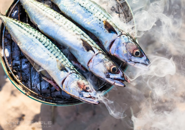 Mackerel on a beach barbecue in cornwall