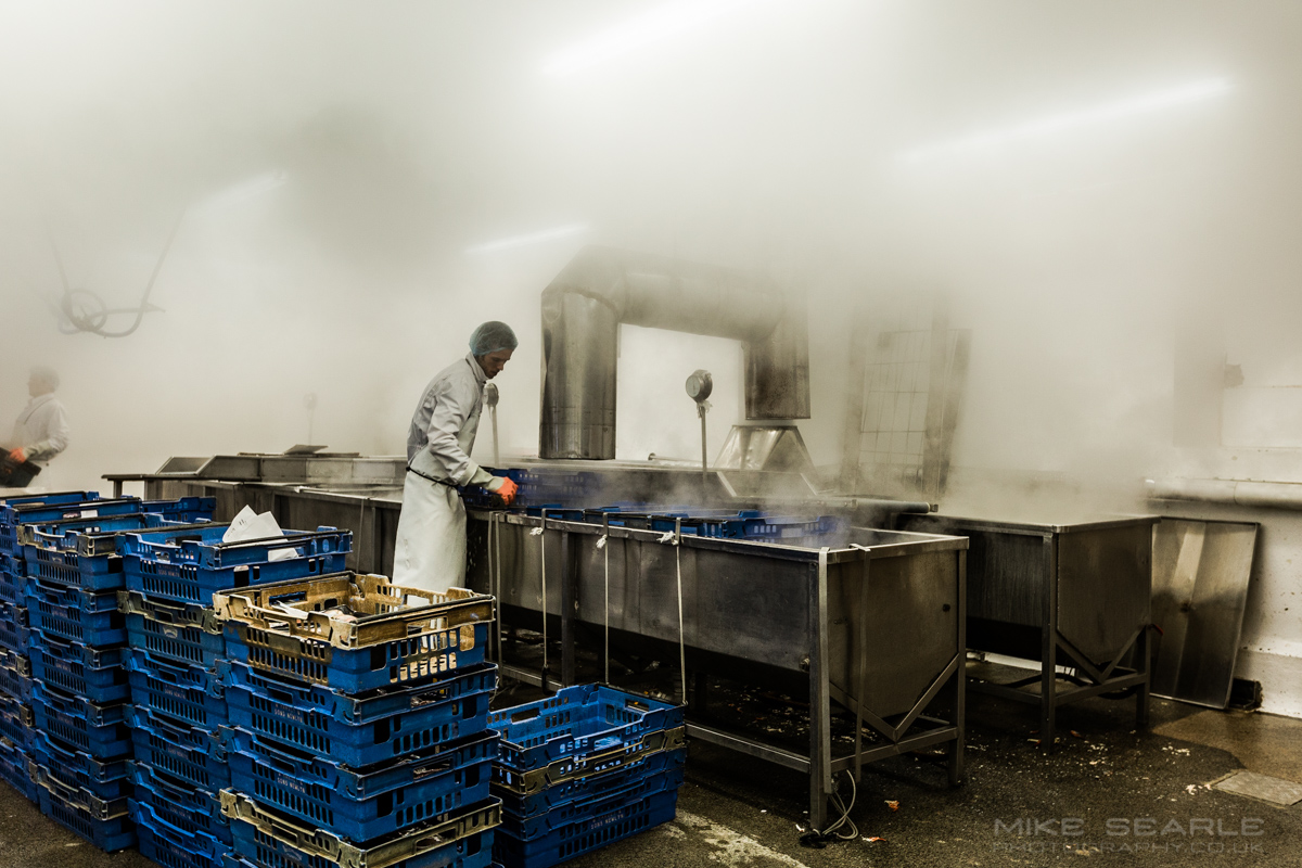 steaming crabs food photographer cornwall